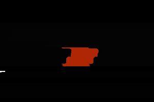 Brännskär logo